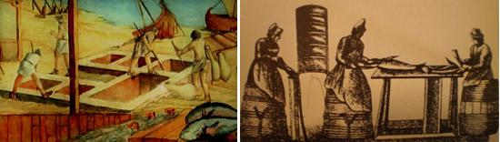 Historia del salazón